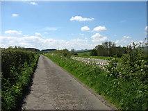 NY9169 : The Hadrian's Wall Path follows a minor lane by David Purchase