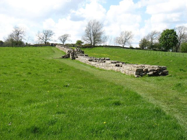 A stretch of Hadrian's Wall near Black Carts Farm