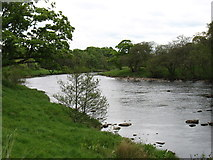 NY9170 : The River North Tyne at Chesters Fort (Roman Cilurnum) by David Purchase