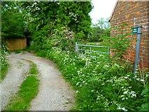 SU4773 : Footpath at Chieveley by Shazz