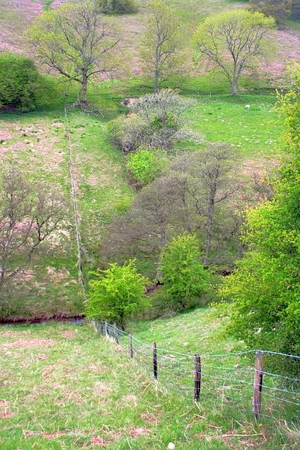 Fence Crossing, Levisham Beck