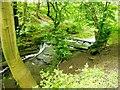 NZ3374 : Weir on the Seaton Burn by Bill Henderson