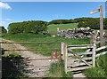 NT4828 : Signpost, Borders Abbeys Way by Barbara Carr
