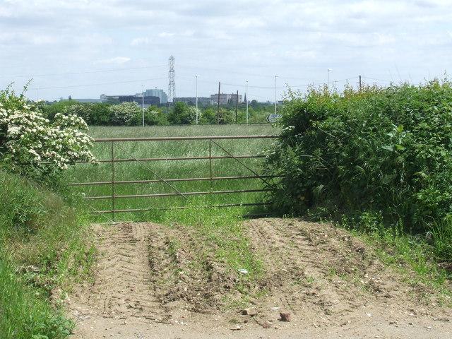 Field near Denham