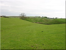 NY6566 : The Hadrian's Wall Path heading for Gilsland by David Purchase