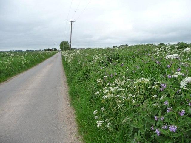 Quay Lane, north of Bankside Farm