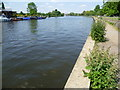 TQ1767 : The River Thames from Queen's Promenade by Marathon