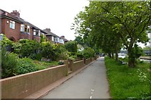 SE5952 : Houses on Sycamore Terrace by DS Pugh