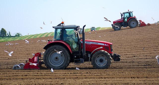 Tractors, Bangor