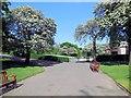 NT2573 : West Princes Street Gardens by Paul Gillett