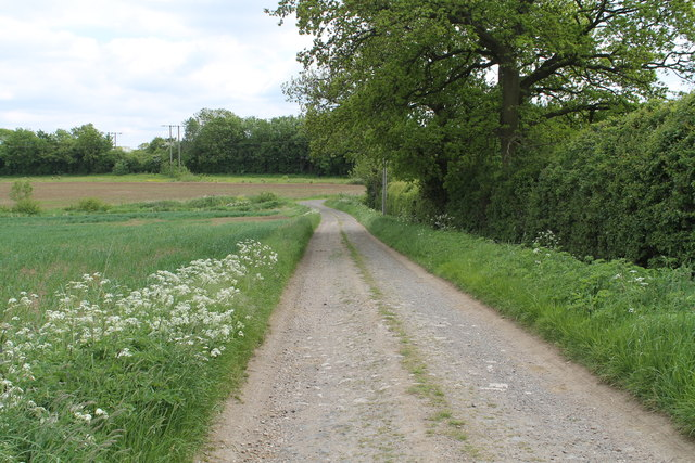 Driveway to Cribb's Lodge Farm