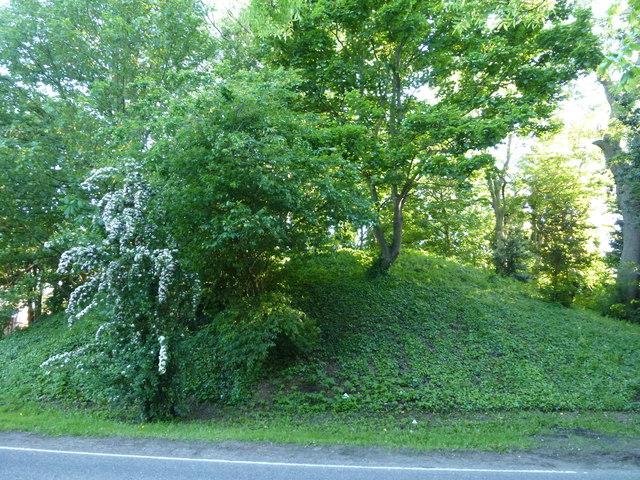 Rabbit Hill on Dowgate Road, Leverington