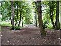 SJ8889 : Alexandra Park, Edgeley by Gerald England