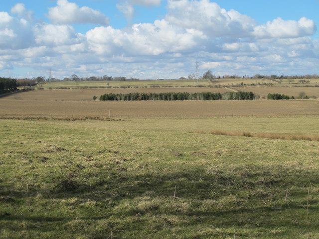 Farmland east of Shildonhill and Carrsfell Plantations