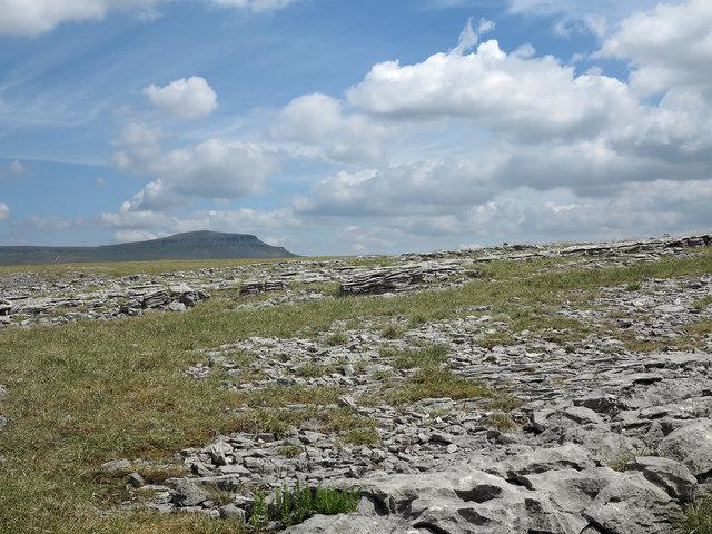 Limestone pavement at Moughton