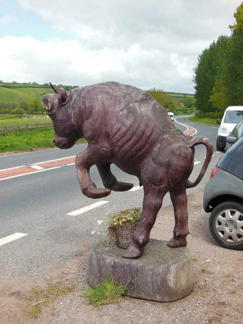 A bull next to the B3181