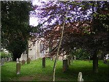 TM4883 : St.Nicholas Church, Wrentham by Adrian Cable