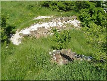 SE2525 : Ruins of Howley Hall, cellar window or fireplace? by Humphrey Bolton