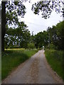 TM4884 : Entrance to Moat Farm by Geographer