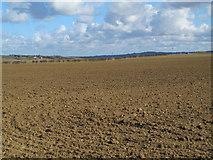NZ0666 : Farmland south of Bogle Burn by Mike Quinn