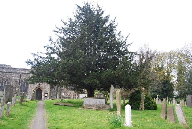 Graveyard, St Mary's Church