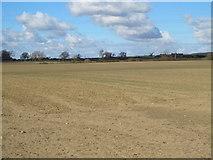 NZ0666 : Farmland south of Holleywell Burn by Mike Quinn