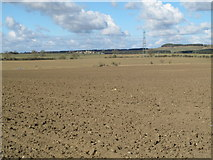 NZ0666 : Farmland SSW of Welton Hall by Mike Quinn