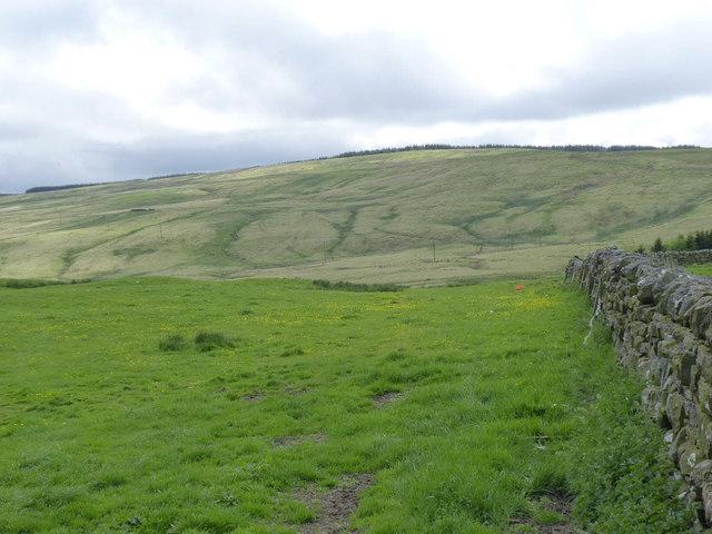 Landscape near Monkridge