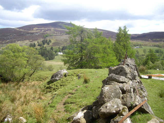 View towards Mount Blair