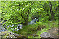 SD2396 : Tarn Beck by Ian Greig