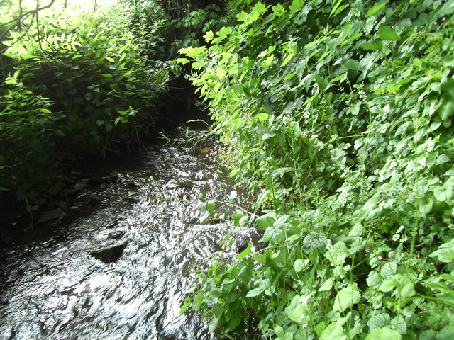 Stream emerging from tunnel under railway line at South Milford