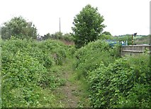 SU8693 : Hughenden Stream by Nigel Cox
