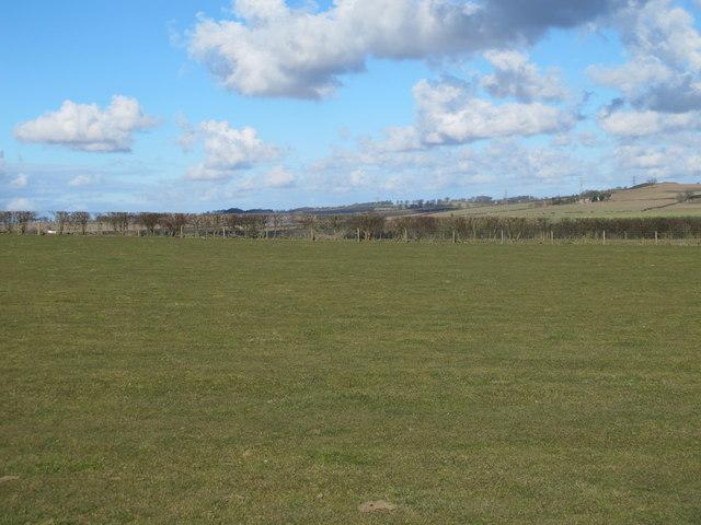 Farmland southeast of Nafferton Farm