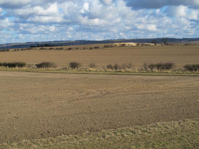 Bearl, Northumberland