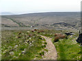 SE0012 : Pennine Way and A640, Marsden Moor by David Dixon
