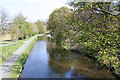 NT1770 : Union Canal from Hermiston Bridge by Anne Burgess
