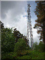 SD3296 : Fire tower, High Man, Grizedale Forest by Karl and Ali