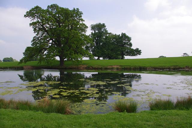 Low Pond, Raby Park
