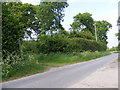 TM4580 : Haleswoth Road & footpath to A145 London,Stoven & Southwold Roads by Adrian Cable