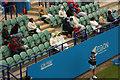 TV6198 : Summer tennis fans by Richard Croft