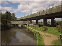 TQ0562 : Bridges over the Wey Navigation by Derek Harper