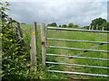 TQ5033 : Squeeze Gate on High Weald Landscape Trail near Littlebrook by David Anstiss