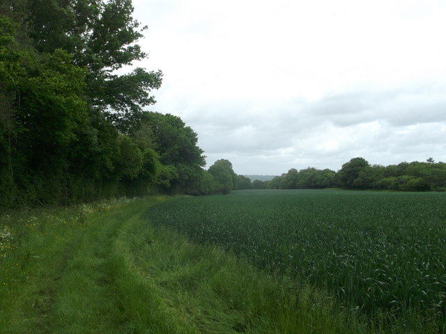 High Weald Landscape Trail beside Coalhouse Wood