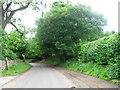 SJ8674 : Whirley Lane by Alex McGregor