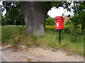 TM1238 : Hall Cottage Hillside Postbox by Adrian Cable