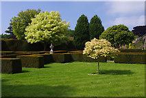 NZ1221 : East garden, Raby Castle by Ian Taylor