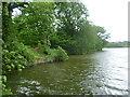 TQ6941 : Furnace Pond by Marathon