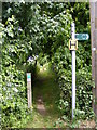 TM1241 : Footpath off Church Lane by Adrian Cable