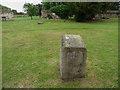 TL3800 : Stone, Churchyard, Waltham Abbey, Essex by Christine Matthews