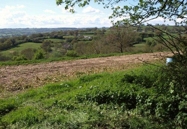 Towards Furley